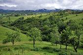 красивые зеленые, яркие горы — Стоковое фото