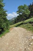 Winding dirt lane, road ascending a mountain — Stock Photo