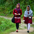 Stock Photo: School girls going in the school in the Himalayas
