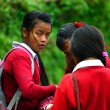 School girls going in the school in the Himalayas — Stock Photo #33810735
