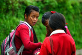 School girls going in the school in the Himalayas — Stock Photo
