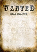 Wanted vintage poster, dead or alive — Stock Photo