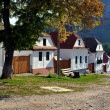 Stock Photo: Whitewashed houses in Torocko, Rimetevillage. Transylvania, Romania