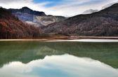 Contaminated lake water — Stock Photo
