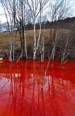 Contaminated mine water pollution of a copper mine exploitation — Stock Photo