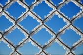 Winter achtergrond met een rooster vallende ijskristallen — Stockfoto