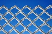 Fondo de invierno con un enrejado cubierto por cristales de hielo — Foto de Stock