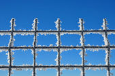 Winter background with a lattice covered by ice crystals — Stock Photo