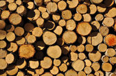 Background of stacked chopped wood prepared for winter — Stock Photo
