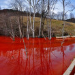 Environmental disaster. Panorama of a lake full with contaminate — Stock Photo