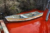 Abandoned boat in a contaminated red lake — ストック写真