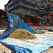 Woman threshing grain in Kathmandu, Nepal — Stock Photo #37374105
