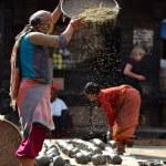 Woman threshing grain in Kathmandu, Nepal — Stock Photo #37374157