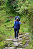 Sherpa in the Himalayas — Stock Photo
