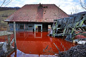 Ecological disaster. An abandoned village flooded by polluted wa — Stock Photo