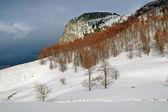 雪カバー山 — ストック写真
