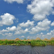 Danube delta, Romania — Stock Photo #38955593