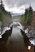 River winter landscape — Stockfoto