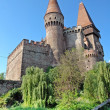 Corvin castle in Transylvania — Stock Photo #41266147