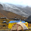 Storm in the Annapurna Base Camp, Nepal — Stock Photo #42328835
