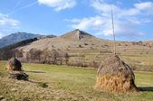 干草堆 — 图库照片