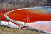 Pollution of a lake with contaminated water  — 图库照片