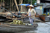 Mekong delta, Vietnam — Stock Photo