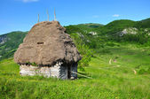 Wooden stable with thatched roof — Stock Photo