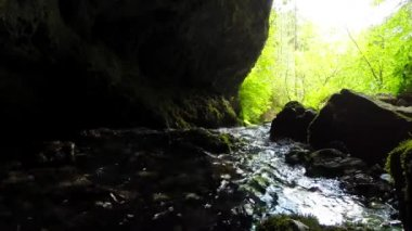 Stream source from a karst cave — Stock Video