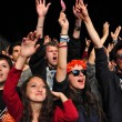 Partying people during a live concert — Stock Photo #48600759