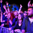 Partying people during a live concert — Stock Photo #48600869
