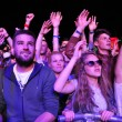Partying people during a live concert — Stock Photo #48600873