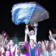 Partying people during a live concert — Stock Photo #48601021