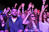 Partying people during a live concert — Stock Photo