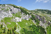 Limestone ridge, Iorgovanului cliff in Retezat mountain, Romania — Stock Photo