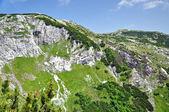Cresta calcarea, rupe iorgovanului in montagna retezat, romania — Foto Stock