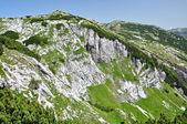 Wapienny grzbiet, iorgovanului klif w retezat mountain, rumunia — Zdjęcie stockowe