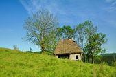Estábulo de madeira com telhado de colmo — Foto Stock
