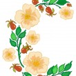 Abstract roses branch — Stock Vector