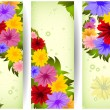 Colorful floral banners — Stock Vector #49939083