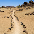 Pathway through volcanic land — Stock Photo #12802063