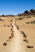 Pathway through volcanic land — Stock Photo