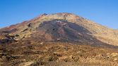Narices del Teide — Stock Photo