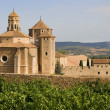 Stock Photo: Monastic site of Poblet