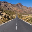 Road through National Park of Teide — Stock Photo #14801421