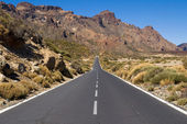 Road through National Park of Teide — Stock Photo