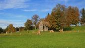 Rural scene in Bavaria — Stock Photo