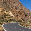 Road through volcanic land — Stock Photo #15732345