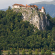 Royalty-Free Stock Photo: Bled Castle