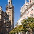 La Giralda — Stock Photo #18529519